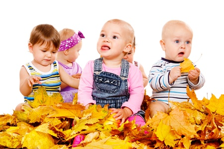 Funny babies group sit in yellow leaves photo