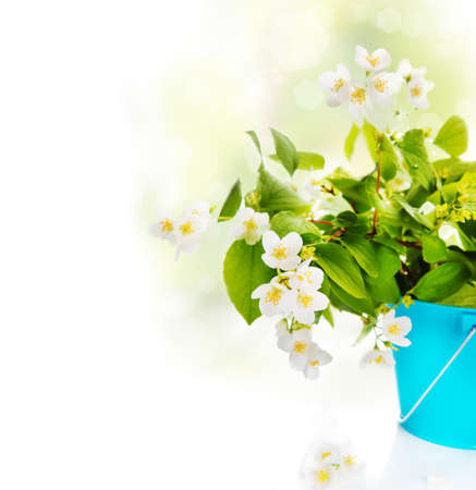 Spring white flowers arangement in a bucket photo
