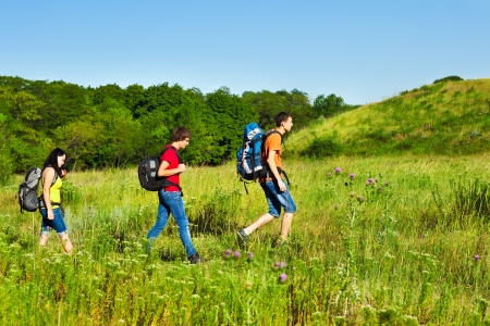 Group of teenage friends with backpacks hiking Standard-Bild