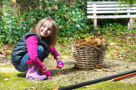 autumnal: Preschool girl putting foliage to the wicker basket