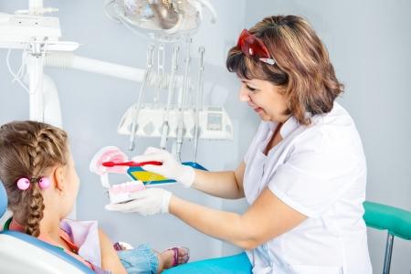 Dentiste pédiatrique montrant les principes de base d'hygiène dentaire