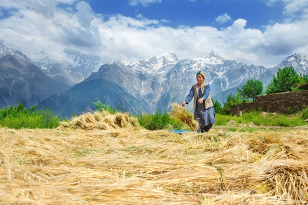 agriculture india: Woman in mountain village drying harvest  Stock Photo