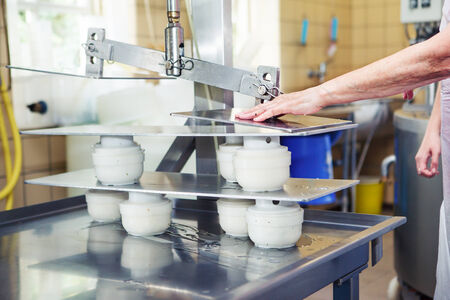 factory farm: Press equipment at the artisan cheese manufacture Stock Photo