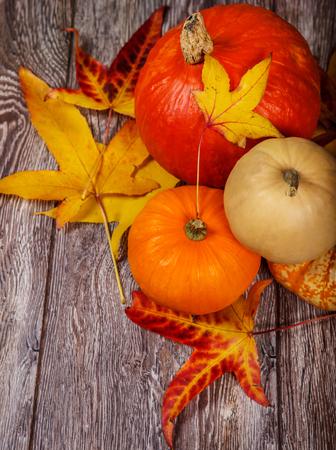 october: October pumpkins decoration