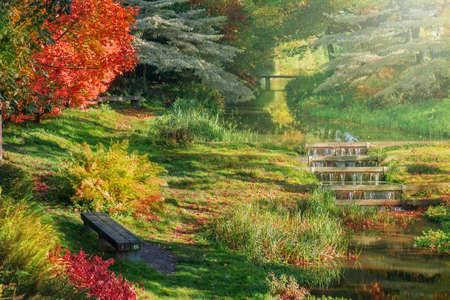 western european: Autumn in western European park