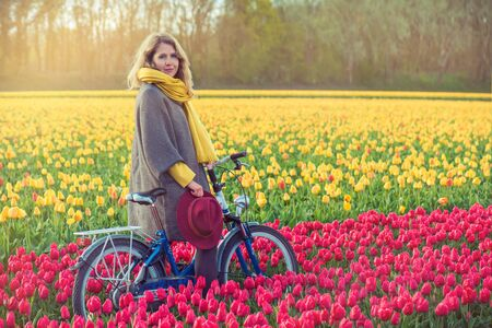 dutch girl: Female in a coat and hat riding bike through tulip fields in the south-west of the Netherlands. Shot at sunset. Stock Photo