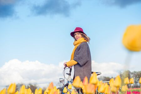 dutch girl: Female in a coat and hat riding bike through tulip fields in the south-west of the Netherlands. Photo taken from below
