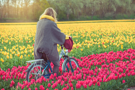 dutch girl: Female in a coat and hat riding bike through tulip fields in the south-west of the Netherlands