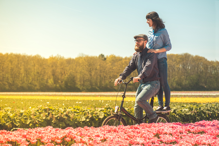 dutch typical: Happy loving couple cycling through a typical Dutch tulips field in spring Stock Photo