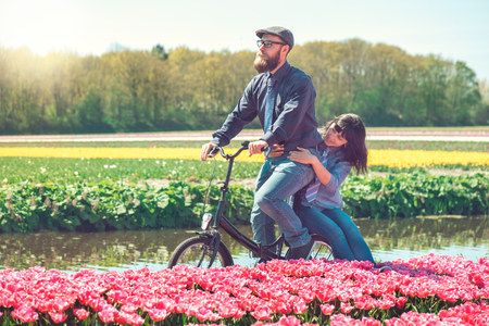 Happy loving couple cycling through a typical Dutch tulips field in spring Stock Photo
