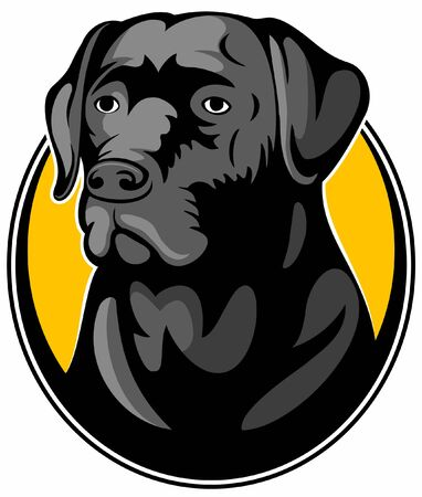 Realistic black labrador retriever dog, vector image.