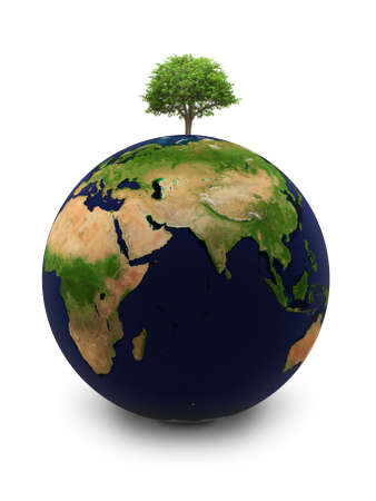 Planet the Earth with a tree on the white isolated background photo
