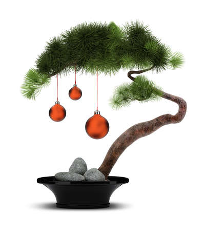 The Chinese new year. A decorative pine with red spheres. Bonsai.