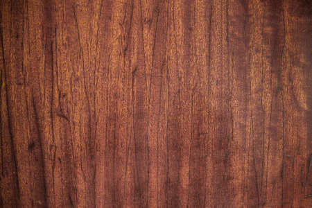 The old wood texture Stock Photo