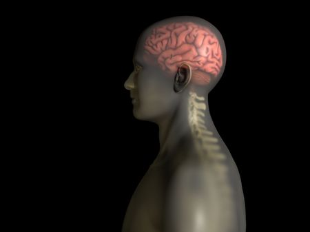 central nervous system: Brain and spine lateral graphic with transparent skin overlay on black background Stock Photo