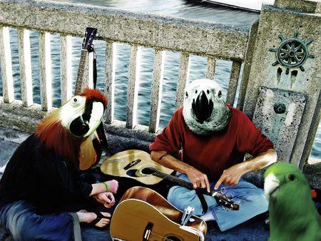 ウォーター フロント埠頭でヒューマノイド鳥類の超現実的な絵画をつぶやき