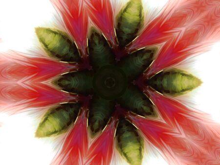 花のテーマのデジタル イラストです。 写真素材