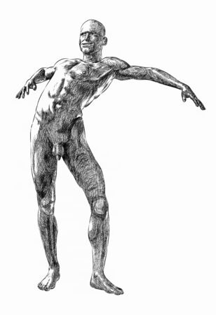 An anatomical cross-hatching illustration of a nude man