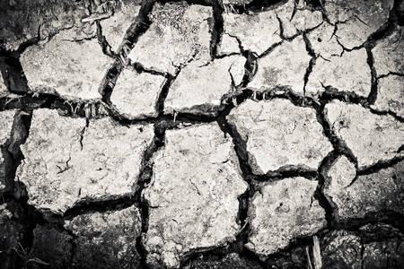 quake: Surface crack texture