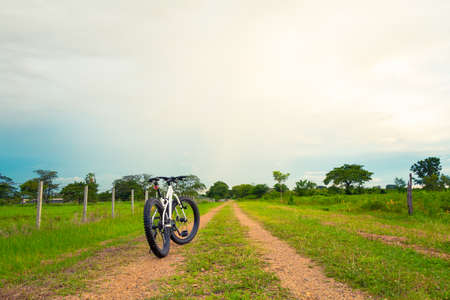 trail bike: Mountain biking on single track beautiful nature green grass and cloud blue sky