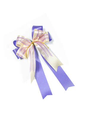 Purple ribbon bow on white