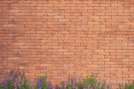 Bloemen op bakstenen muurtextuur Stockfoto