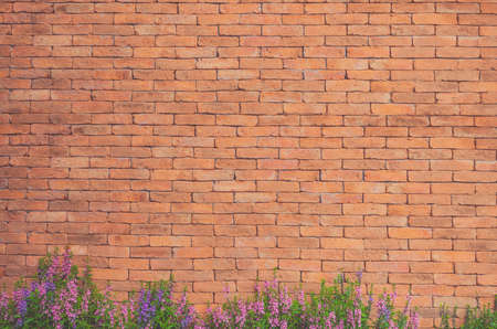 Flowers on Brick Wall Texture