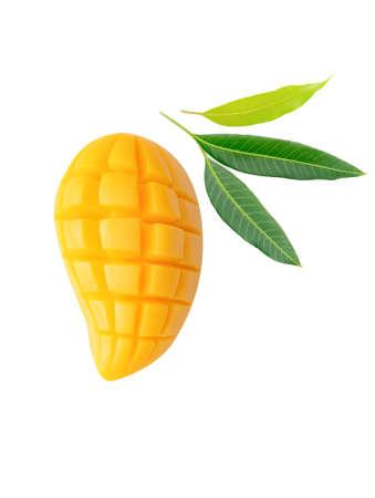 Mango fruit and leaf isolated on white background