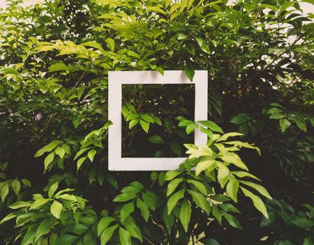 White Frame On Green Grass for Background