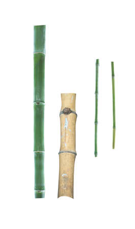 bamboo timber isolated on white background Banque d'images