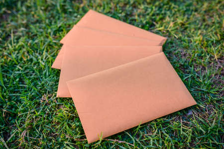 Brown envelope back  on grass background, Business Delivery concept. 版權商用圖片