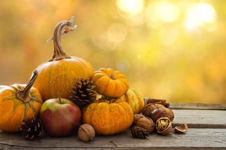 Herbst Natur-Konzept. Herbst Obst und Gemüse auf Holz. Festessen zum Erntedankfest. Blur Hintergrund, Lichteffekt