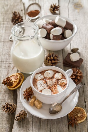 hot beverage: Hot chocolate with marshmallows in white cup Stock Photo