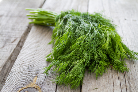 Dill bunch on rustic wood background, closeup