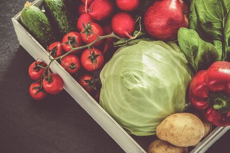 Selection of fresh vegetables from farmers market, copy space, toned