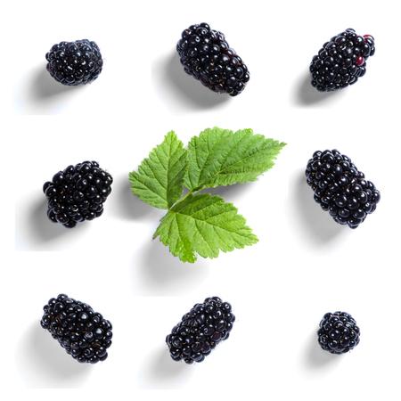 Blackberry-patroon op wit wordt geïsoleerd dat