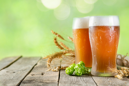 Beer and ingredients hops, wheat, barley on wood background, copy space Stock Photo