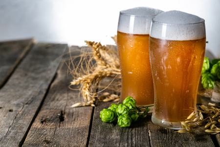 Beer and ingredients hops, wheat, barley on wood background