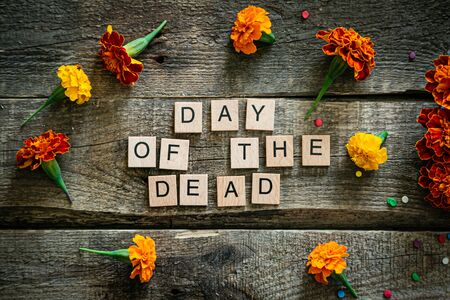 Day of the dead concept