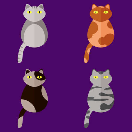 Set of stylized icons in form of cats of different breeds with yellow eyes. Flat style. Collection of isolated vector design elements