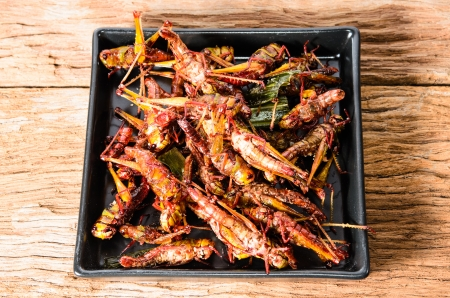 Fried grasshoppers