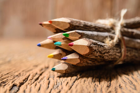 corporate culture: color pencil made of branches