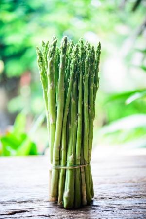 kelly: Fresh green asparagus in a garden. Stock Photo