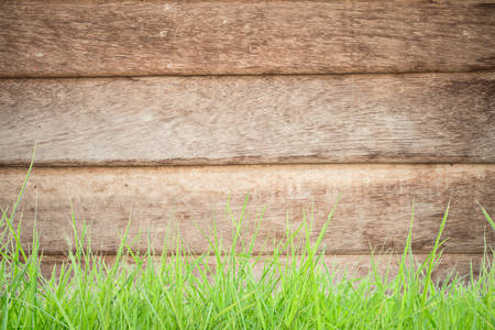 grass on wood  photo