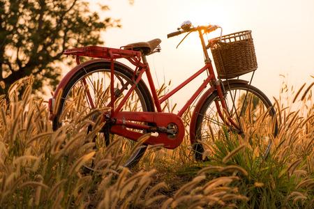 自転車と夕日の美しい風景の画像