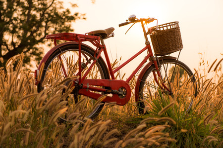 summer holiday: beautiful landscape image with Bicycle  at sunset