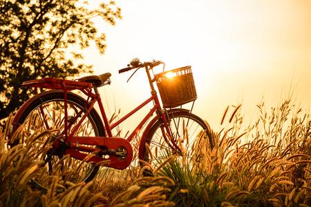 lifestyle: Piękny krajobraz obraz z rowerem na zachód słońca Zdjęcie Seryjne