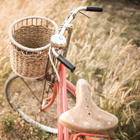 Vintage Bicycle with Summer grassfield photo