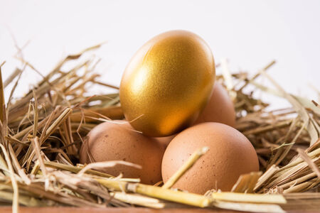 golden eggs in nest isolated on white photo