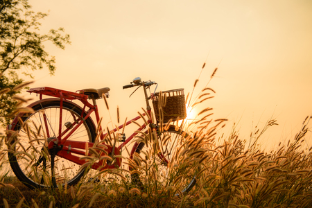 beautiful landscape image with Bicycle  at sunset photo